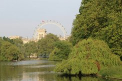 London Eye, from St. James's Park. Royal Wedding, 29th April 2011