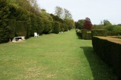 Long Walk, Polesden Lacey, Great Bookham
