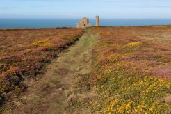 Path to Wheal Coates Mine, St. Agnes