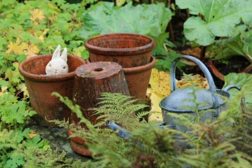 Peter Rabbit, Mr. McGregor's Garden, Beatrix Potter, Hill Top, Near Sawrey