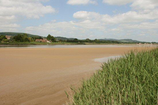 River Severn Estuary, from Arlingham