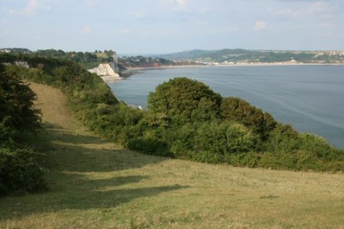 Seaton Bay, from Arratt's Hill, Beer