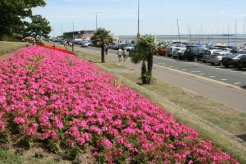 Southend Cliff Gardens, Western Esplanade, Southend-on-Sea