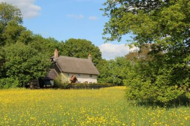 Thatched cottage, near Westmill
