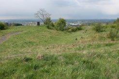 Top of reclaimed coal slag heap, Central Forest Park, Hanley, Stoke-on-Trent