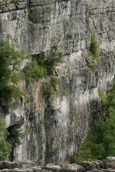 Wall of Malham Cove, from Limestone Pavement