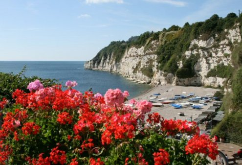 West cliffs and beach, from Jubilee Gardens, Beer