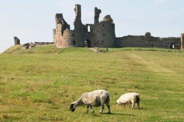 Dunstanburgh Castle, Craster