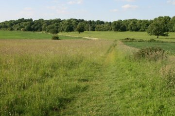 Footpath to Thames Head, (source of River Thames) across Trewsbury Mead, near Kemble