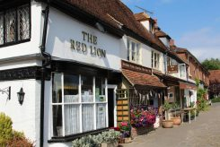 The Red Lion and The Bakehouse Cafe Bed & Breakfast, Biddenden