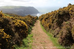 Footpath to Lynmouth, Countisbury