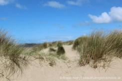 Sand dunes, Instow