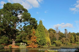 Ten Foot Pond, Sheffield Park Garden