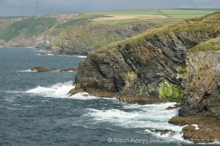 Cliffs leading to Port Gaverne, from Lobber Point, Port Isaac