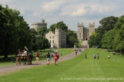 Horse and carriage, The Long Walk, Windsor