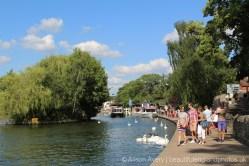 River Thames, Windsor
