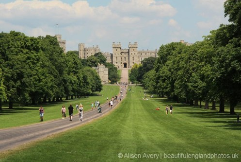 Windsor Castle, from The Long Walk, Windsor