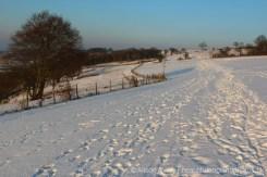 Snow, Dunstable Downs