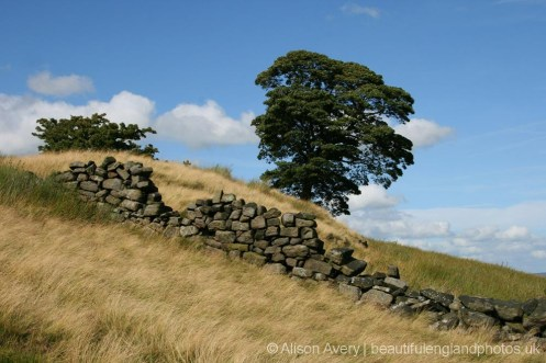 Dry stone wall, Haworth Moor