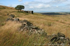 Top Withens, Haworth Moor