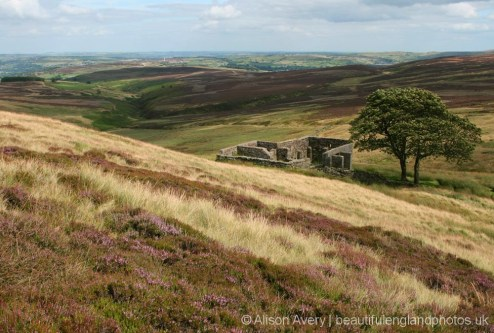 Top Withens, Haworth Moor