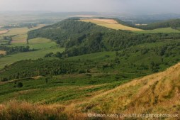 View from summit, Roseberry Topping, North York Moors