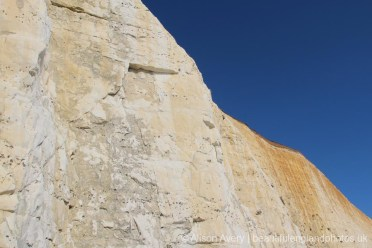 Chalk and flint cliffs, Peacehaven