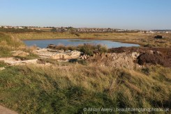 Excavations, Tide Mills, near Newhaven