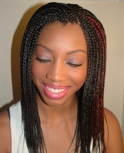 micro braids hairstyles beautiful