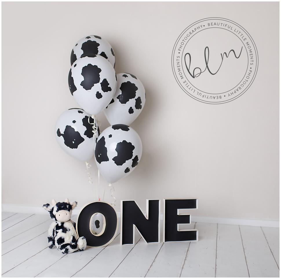 beautifullittlemoments-baby-photography-first-birthday-cow-print-theme