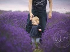 lavender fields banstead
