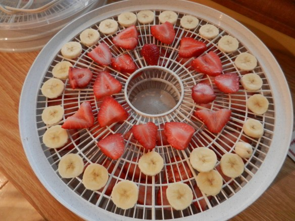 strawberries in dehydrator
