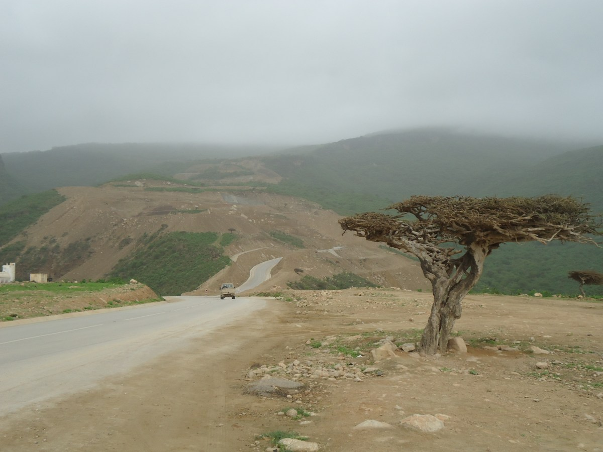 Salalah Anti Gravity Point - A Magical Place where Car Drives in Neutral