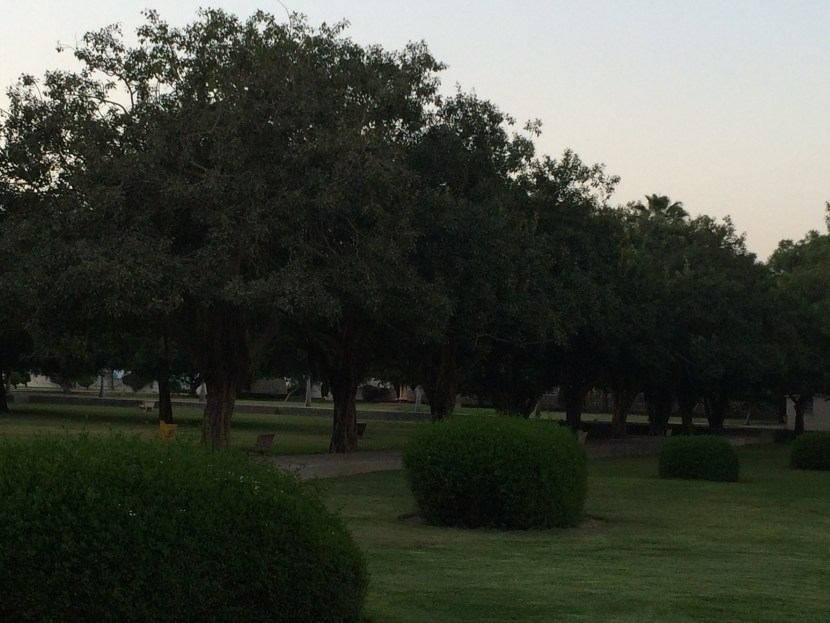 Salalah Public Park