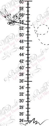 Dragonfly Height Chart
