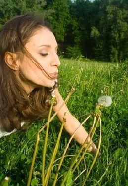 Favorisez l'oeuf Bio ou élevé en plein air