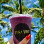 Finding Vegan Food in Miami