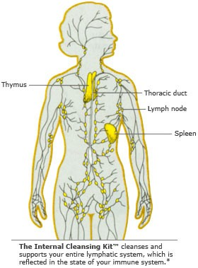 Lymphatic Drainage Air Massage Beauty and laser clinic manly