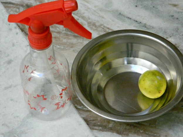 DIY HairSpray: Only 2 Things Needed