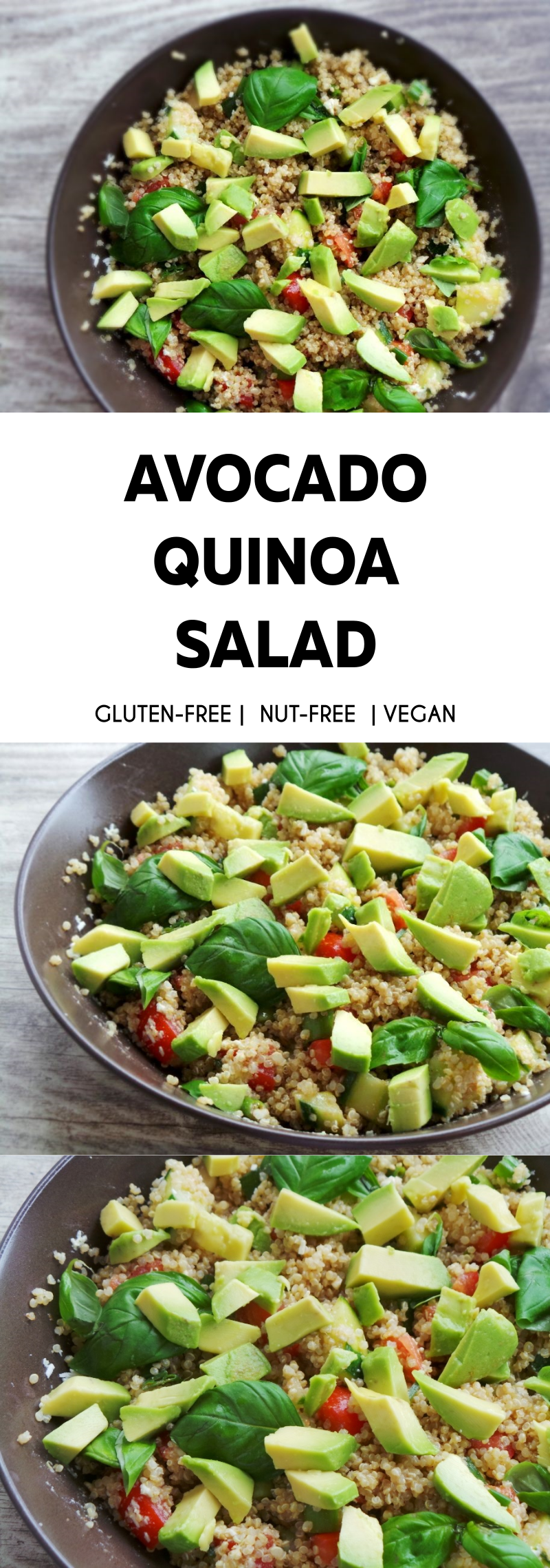 Healthy quinoa summer salad beauty bites quinoa and avocado salad recipe that youll want to eat every day this forumfinder Images