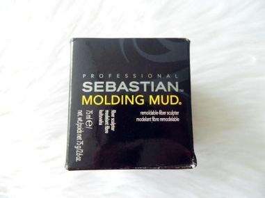 sebastian molding mud