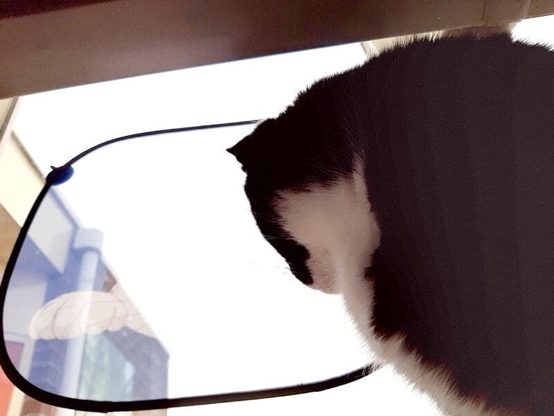 KeeK op de WeeK 8- ONO, Pakketjes, DE Stoelen, The Ordinary & Slaperige Katten... 45 keek op de week KeeK op de WeeK 8- ONO, Pakketjes, DE Stoelen, The Ordinary & Slaperige Katten...