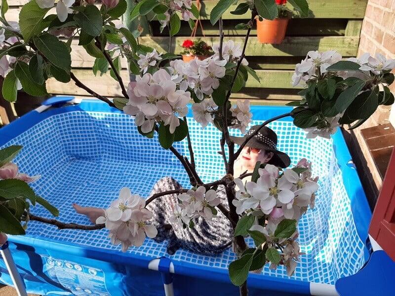 Zwembad in een kleine tuin? Check mijn Intex zwembad! 13 zwembad Zwembad in een kleine tuin? Check mijn Intex zwembad!