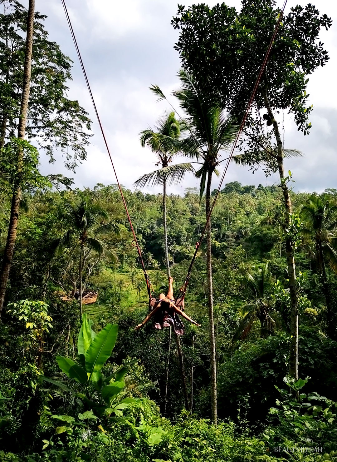 kumulilir coffee plantation jungle swing bali