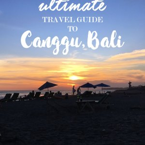 Canggu Bali Travel Guide