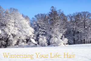 Image of snowy background with Winterizing Your Life Hair in text