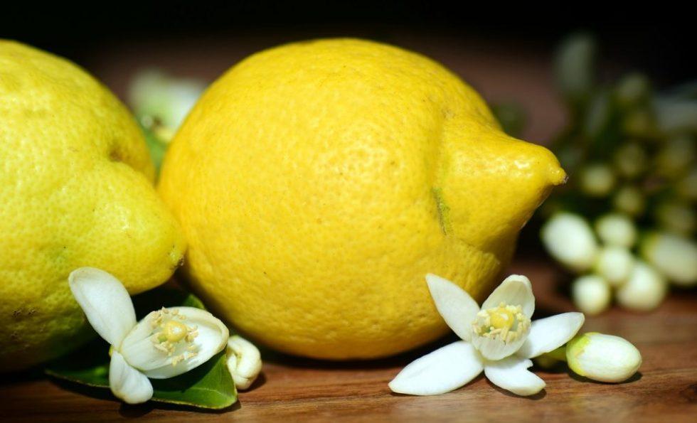 limoni e fiori di limone