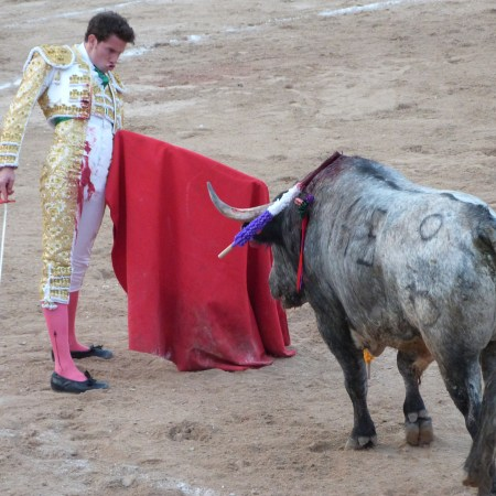 Merida, bullfight