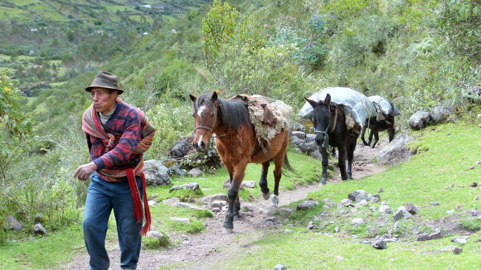 Trekking in the Andes