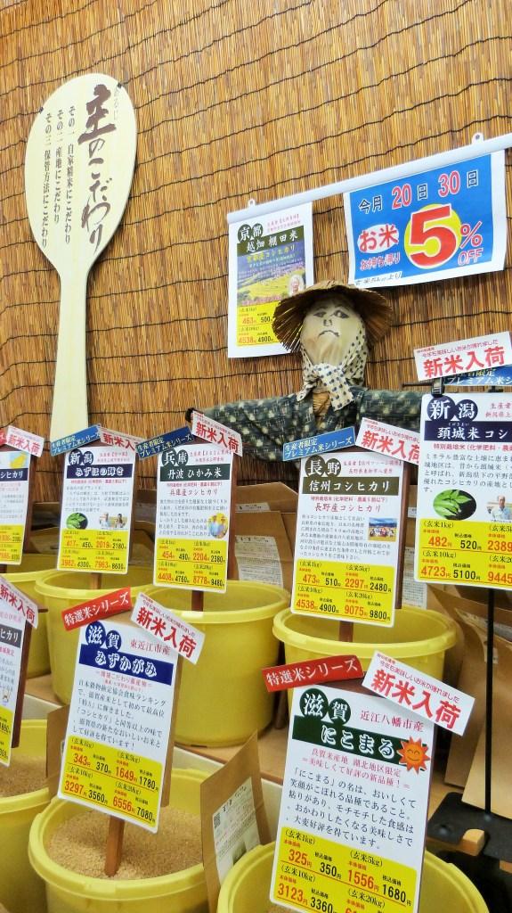 Sake tour, Kyoto, Japan